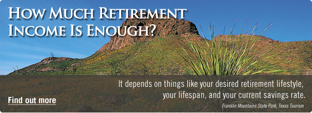 How much retirement income is enough? It depends on things like your desired retirement lifestyle, your lifespan, and your current savings rate. Find out more.