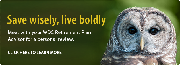 Meet with your WDB Retirement Plan Advisor for a personal review. Click here to learn more.
